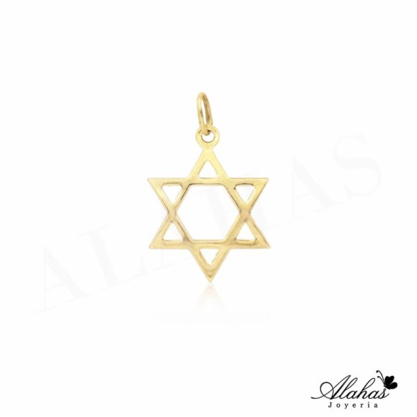 Dije en oro 14k Joyeria Alahas DJO-035